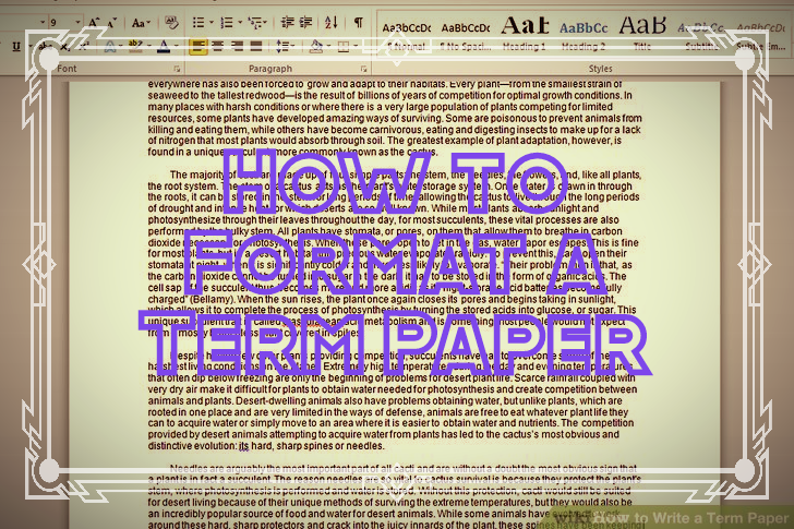 how to formate a term paper